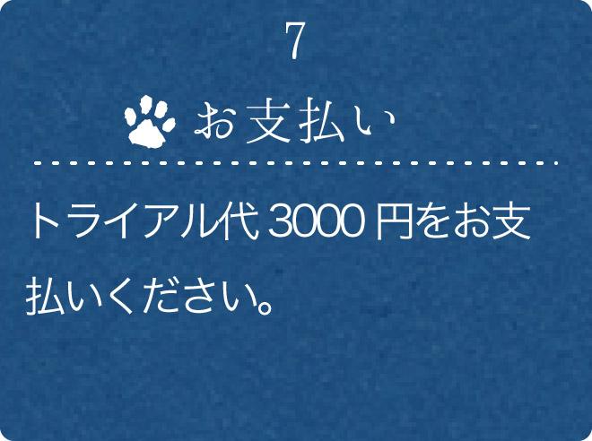 7.お支払い
