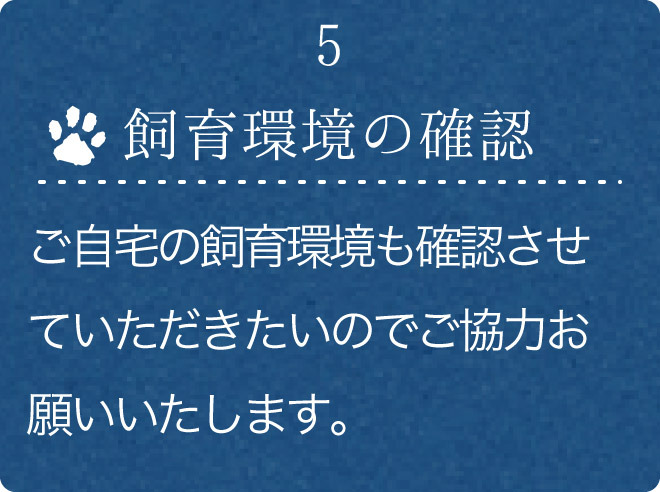 5.飼育環境の確認